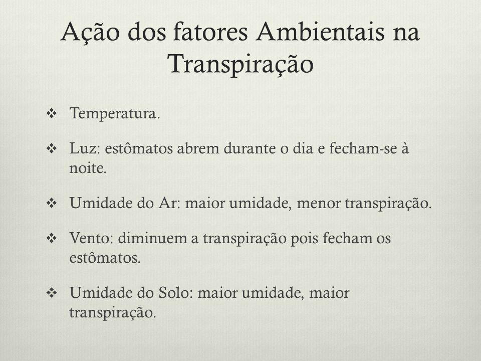 Ação dos fatores Ambientais na Transpiração