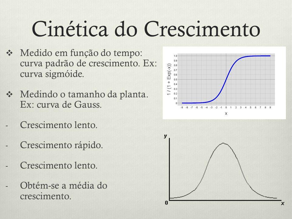 Cinética do Crescimento