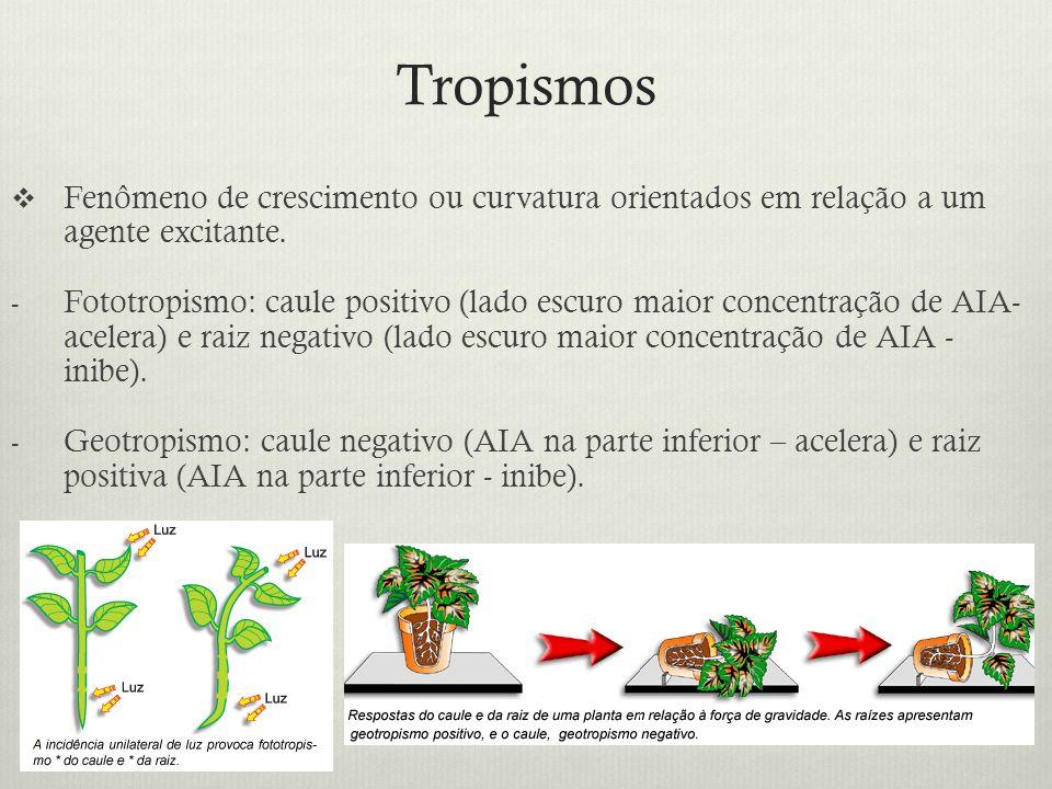 Tropismos Fenômeno de crescimento ou curvatura orientados em relação a um agente excitante.