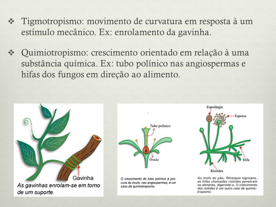 Tigmotropismo: movimento de curvatura em resposta à um estímulo mecânico. Ex: enrolamento da gavinha.