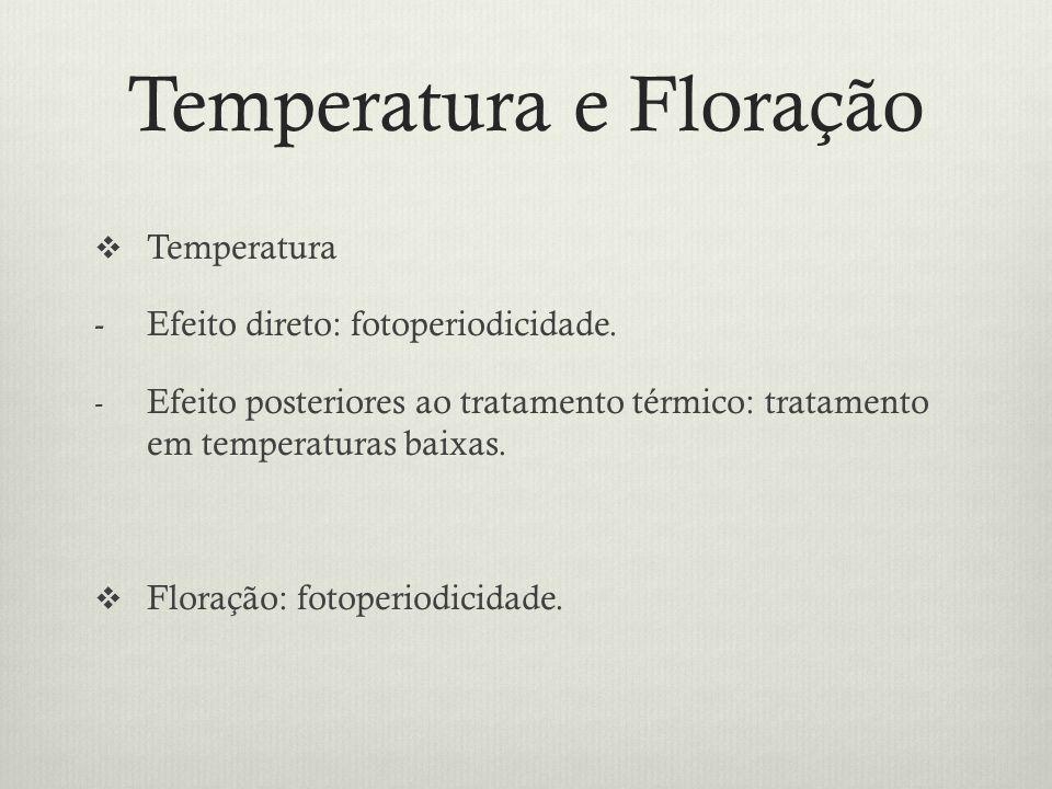 Temperatura e Floração