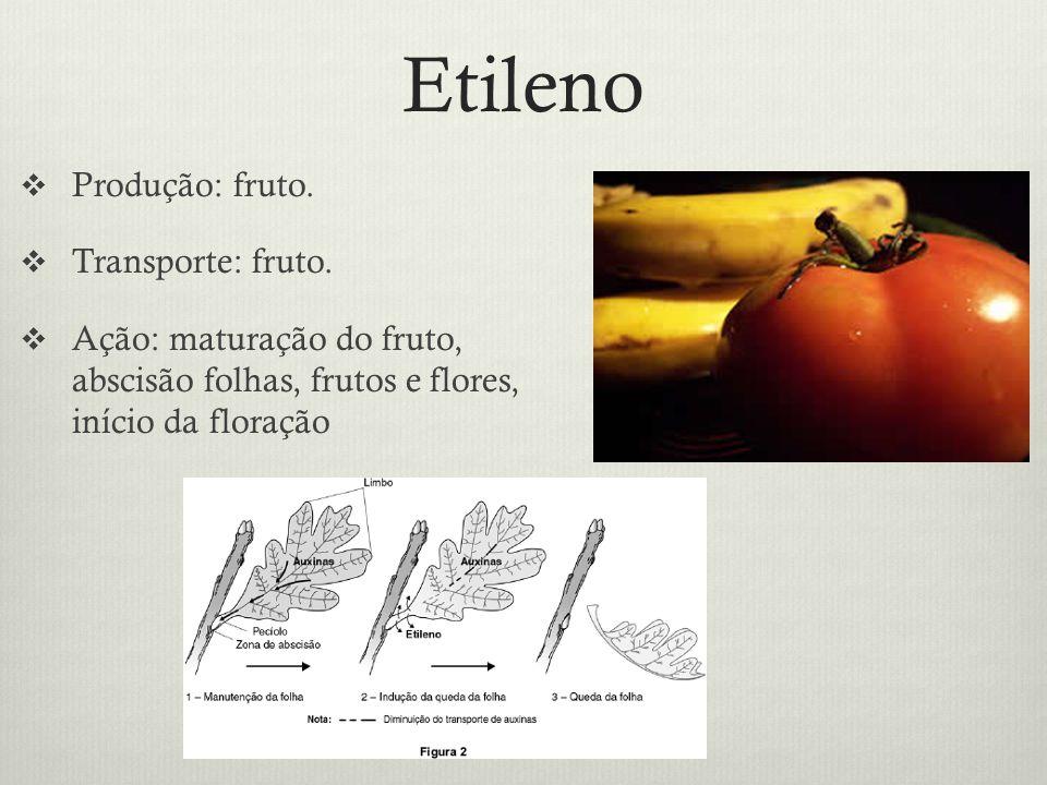 Etileno Produção: fruto. Transporte: fruto.