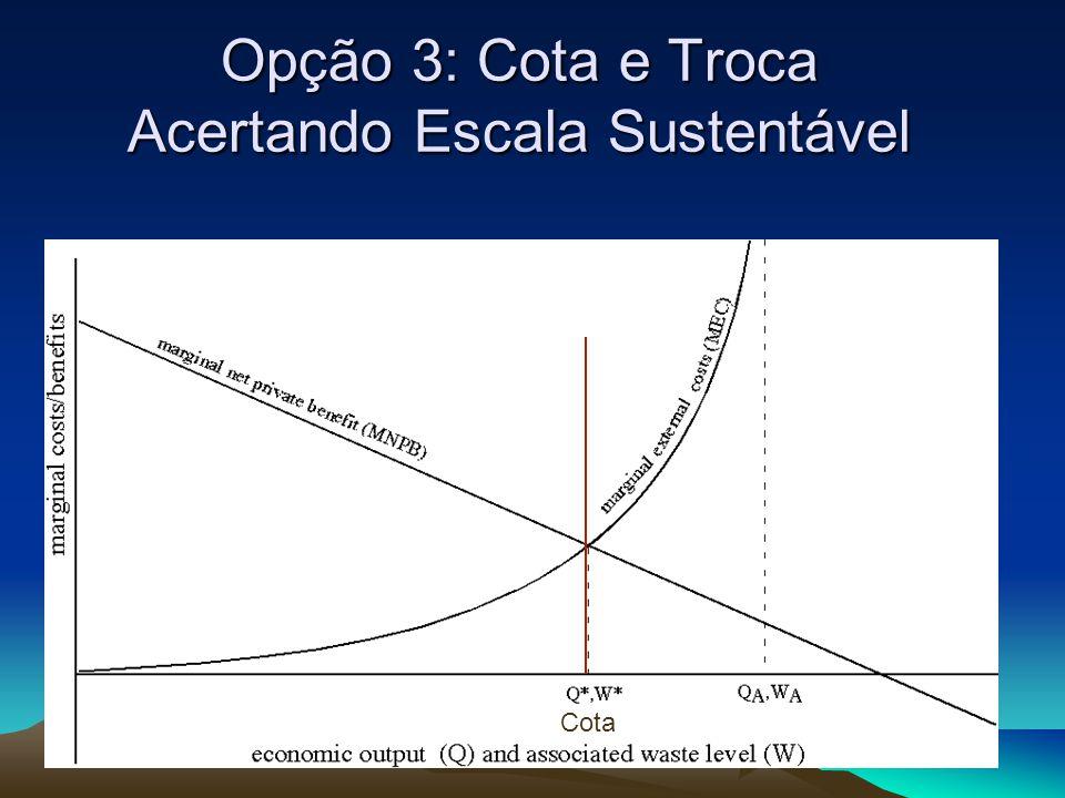 Opção 3: Cota e Troca Acertando Escala Sustentável