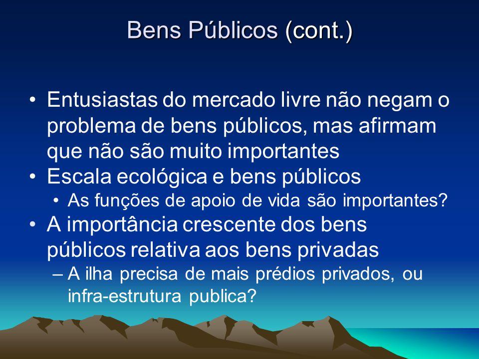 Bens Públicos (cont.) Entusiastas do mercado livre não negam o problema de bens públicos, mas afirmam que não são muito importantes.