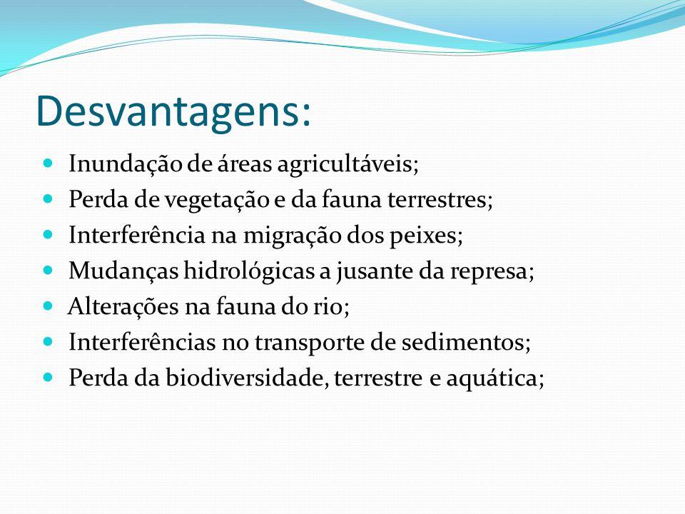 Desvantagens: Inundação de áreas agricultáveis;
