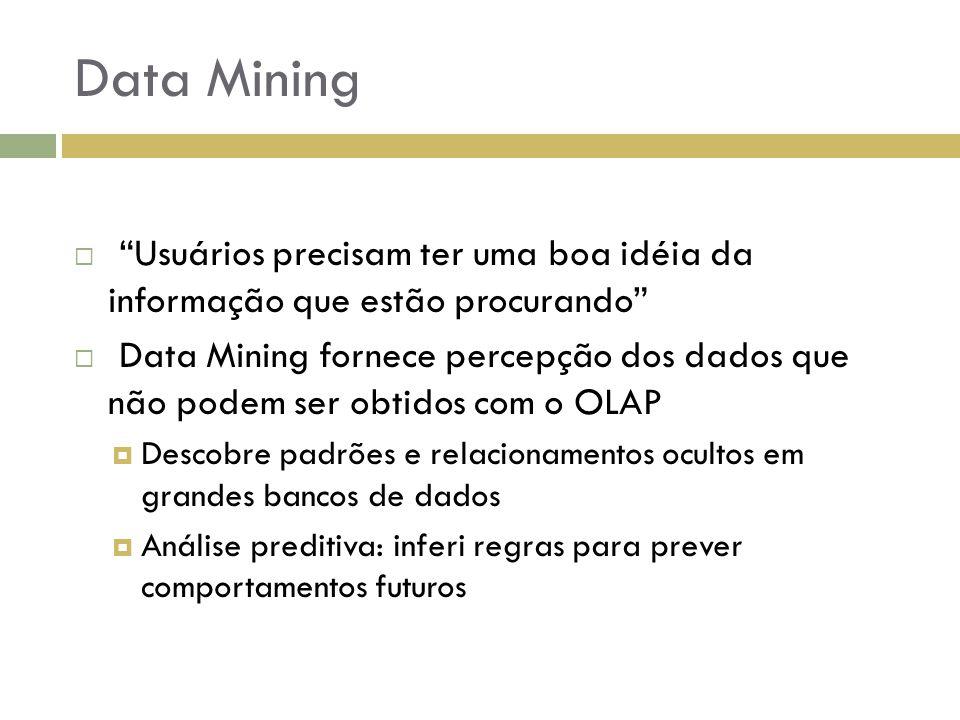 Data Mining Usuários precisam ter uma boa idéia da informação que estão procurando