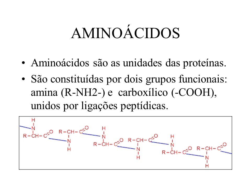 AMINOÁCIDOS Aminoácidos são as unidades das proteínas.