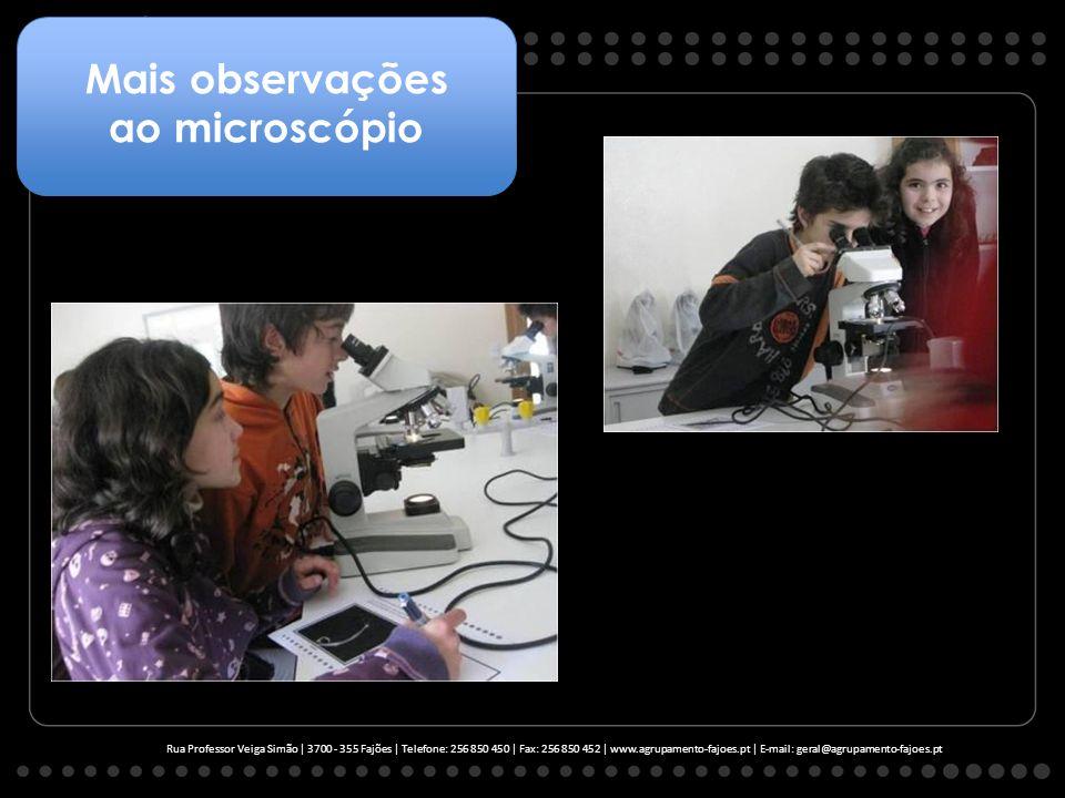 Mais observações ao microscópio