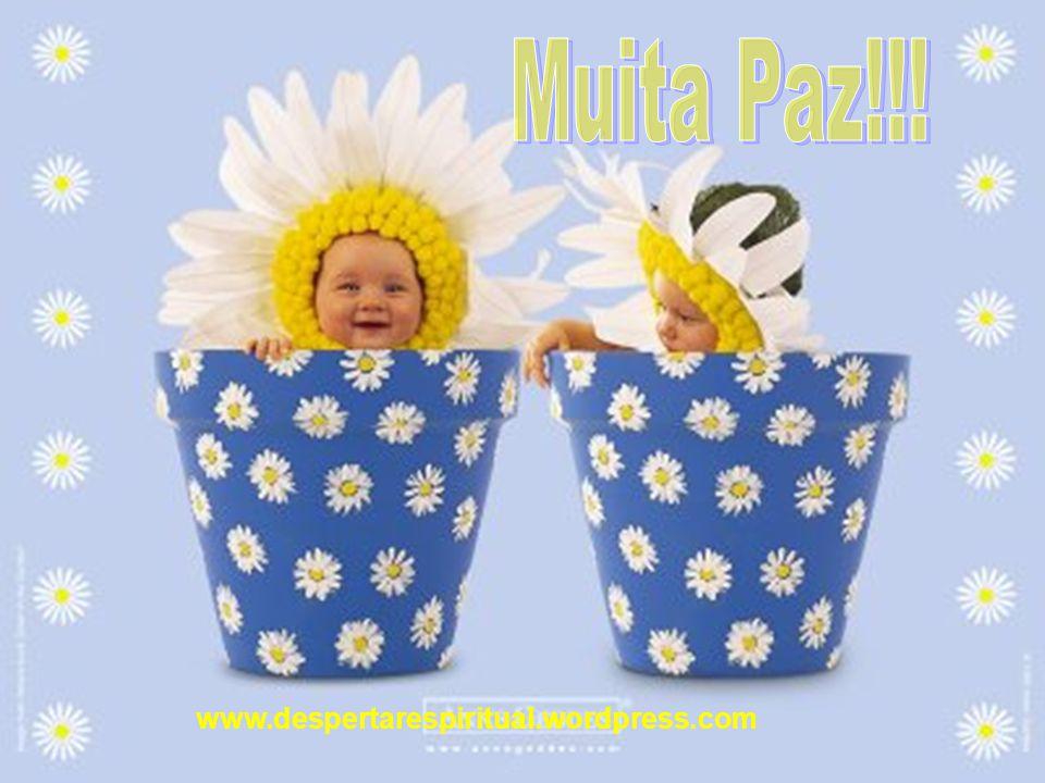 Muita Paz!!! www.despertarespiritual.wordpress.com