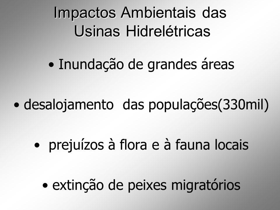 Impactos Ambientais das Usinas Hidrelétricas