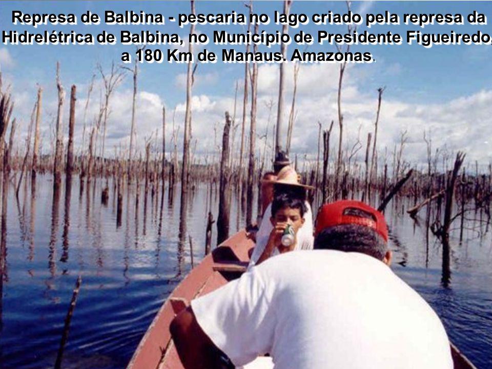 Represa de Balbina - pescaria no lago criado pela represa da Hidrelétrica de Balbina, no Município de Presidente Figueiredo, a 180 Km de Manaus. Amazonas.