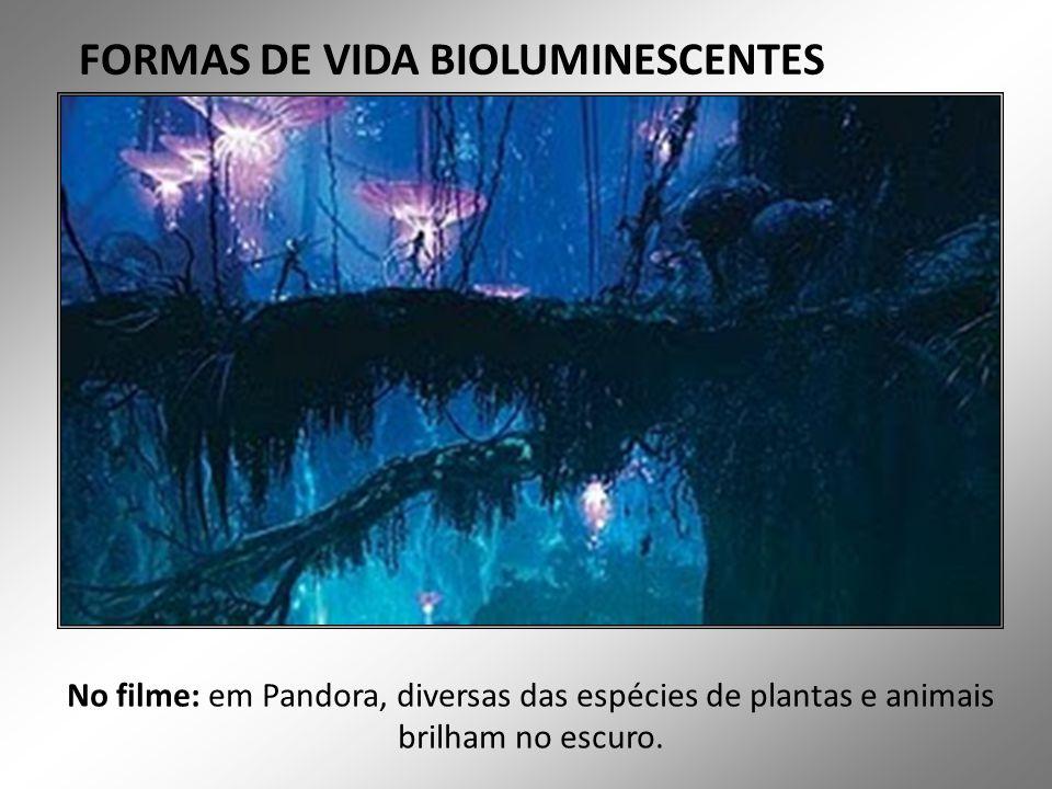 FORMAS DE VIDA BIOLUMINESCENTES