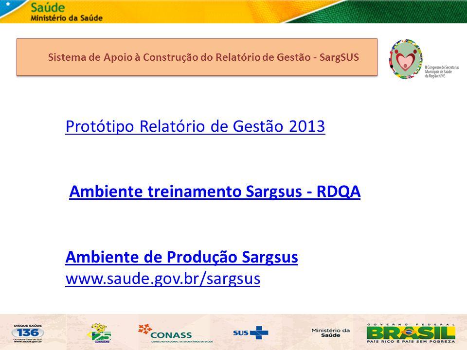 Protótipo Relatório de Gestão 2013