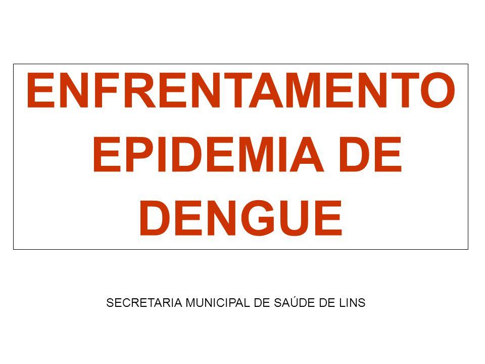 ENFRENTAMENTO EPIDEMIA DE DENGUE