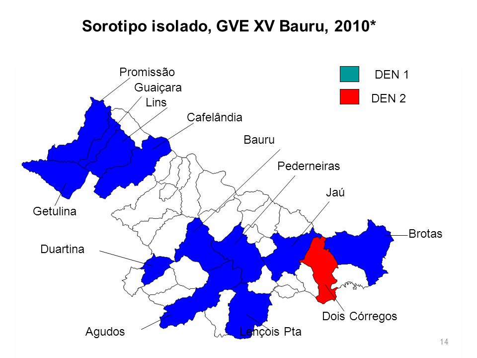 Sorotipo isolado, GVE XV Bauru, 2010*