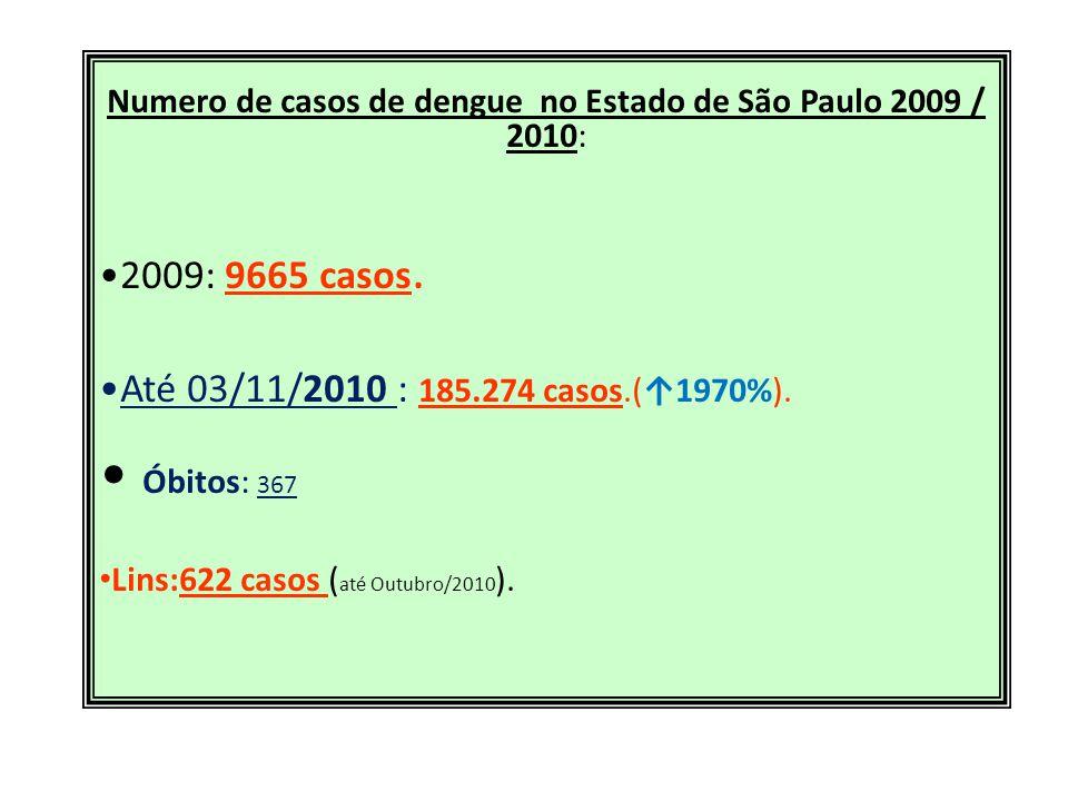 Numero de casos de dengue no Estado de São Paulo 2009 / 2010: