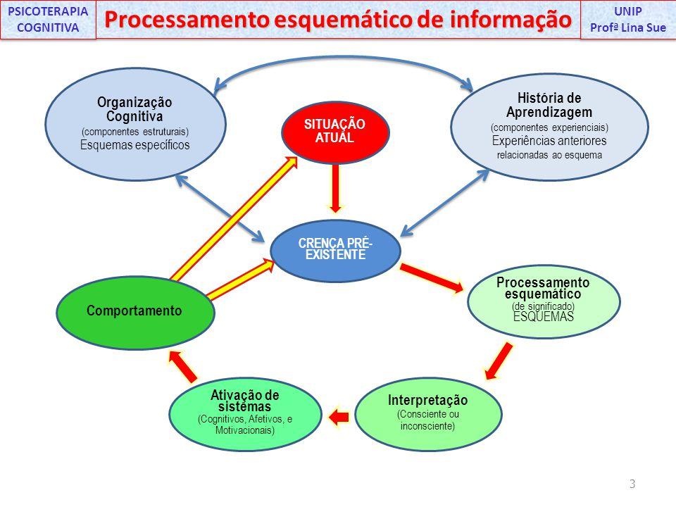 PSICOTERAPIA COGNITIVA Processamento esquemático de informação