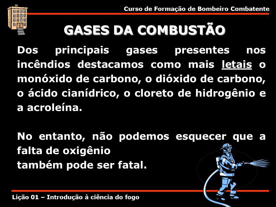 GASES DA COMBUSTÃO