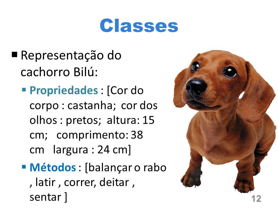 Classes Representação do cachorro Bilú: