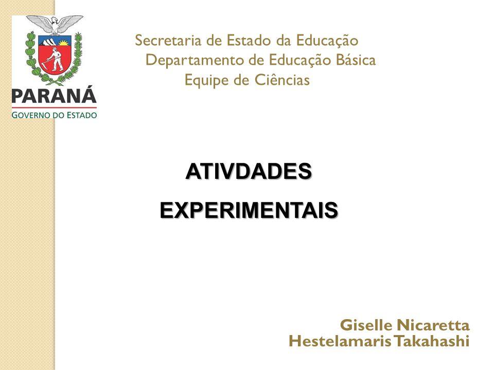 ATIVDADES EXPERIMENTAIS