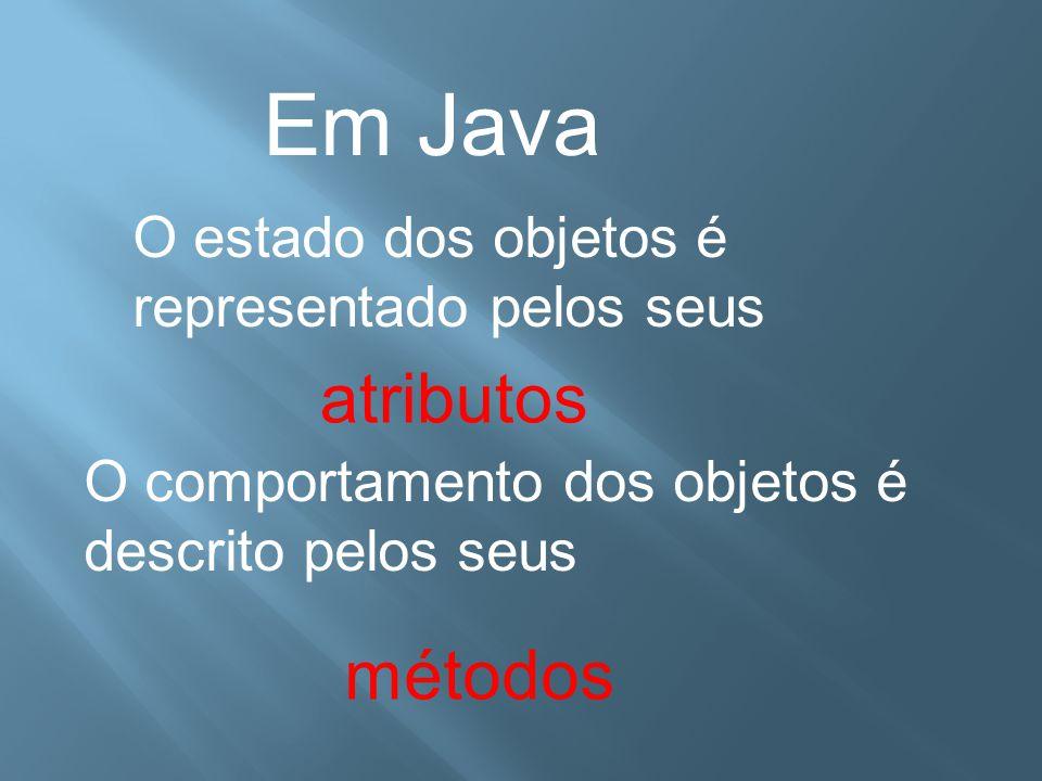 Em Java atributos métodos