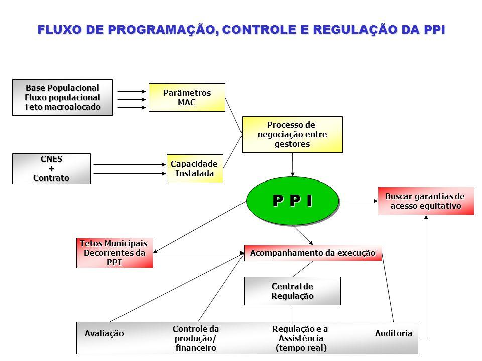 Acompanhamento da execução Regulação e a Assistência (tempo real)