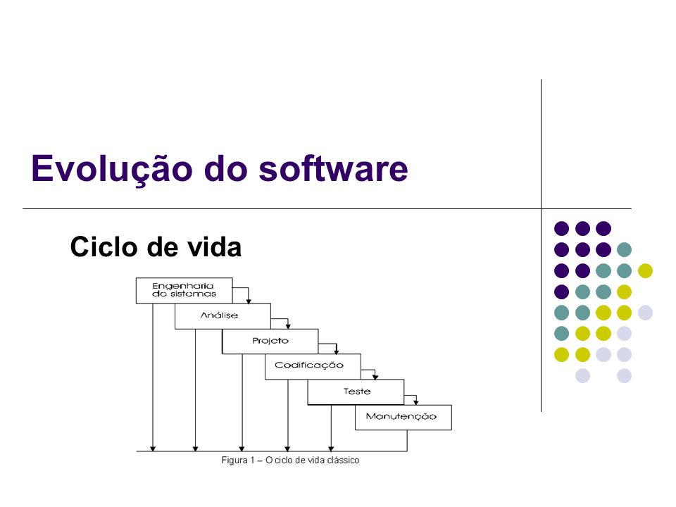 Evolução do software Ciclo de vida