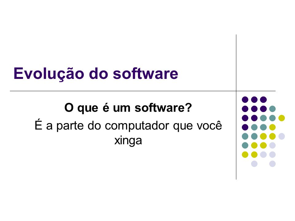 O que é um software É a parte do computador que você xinga