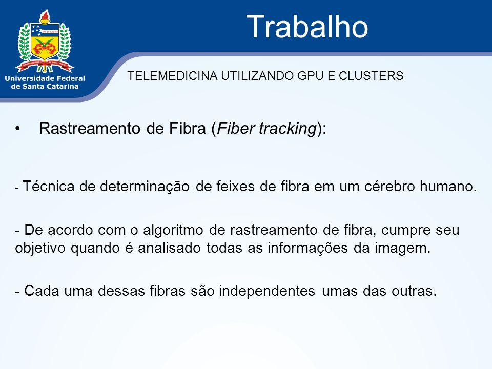 Trabalho Rastreamento de Fibra (Fiber tracking):