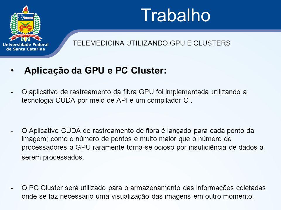 Trabalho Aplicação da GPU e PC Cluster: