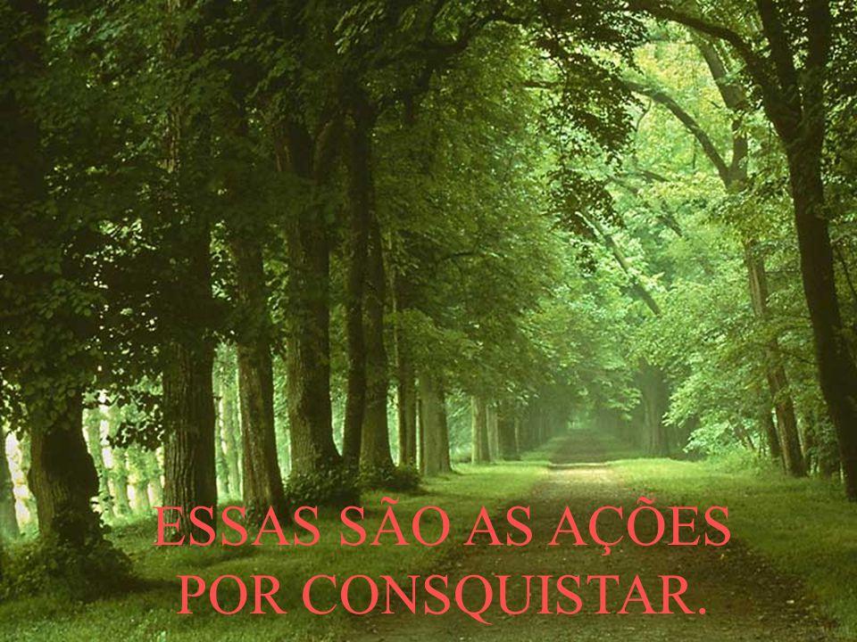 ESSAS SÃO AS AÇÕES POR CONSQUISTAR.