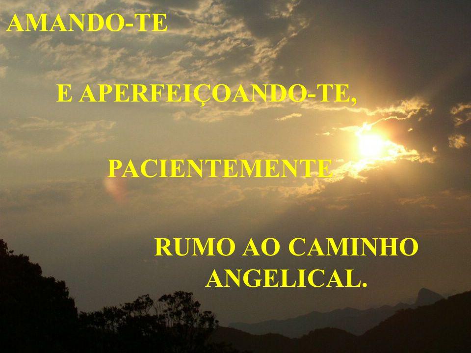 RUMO AO CAMINHO ANGELICAL.