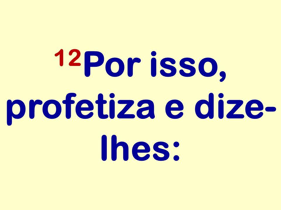 12Por isso, profetiza e dize-lhes: