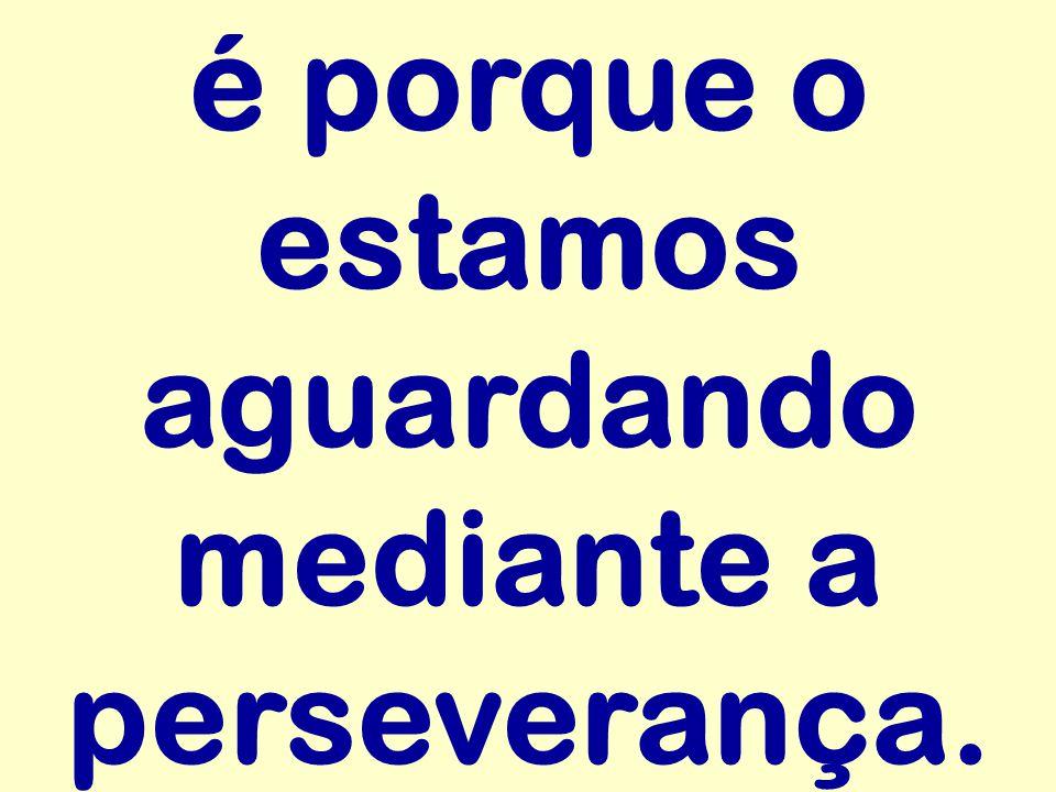 é porque o estamos aguardando mediante a perseverança.