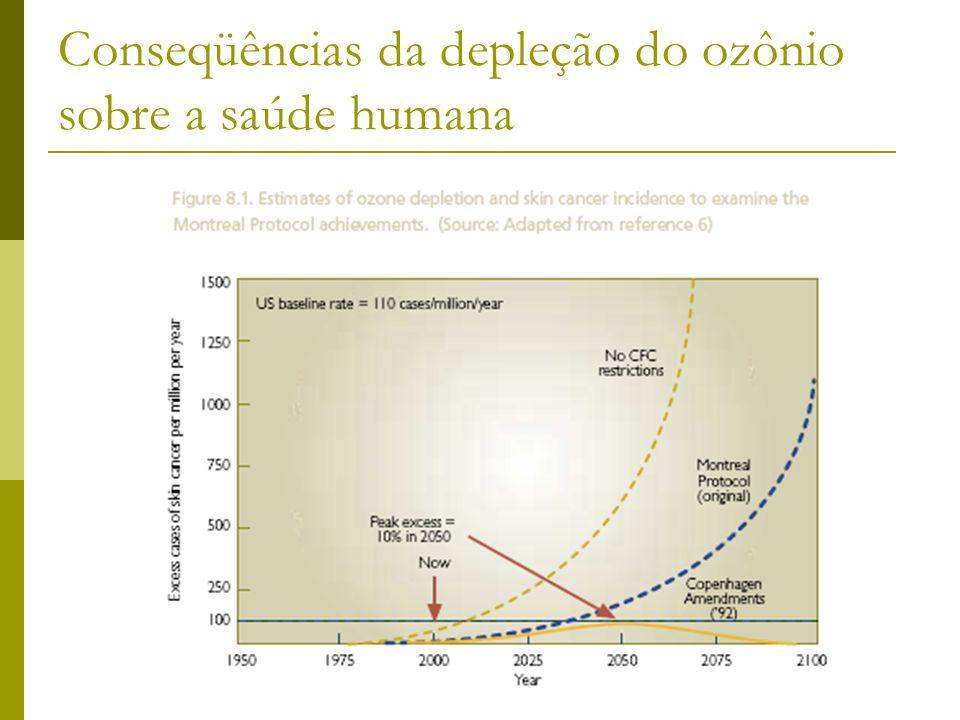 Conseqüências da depleção do ozônio sobre a saúde humana