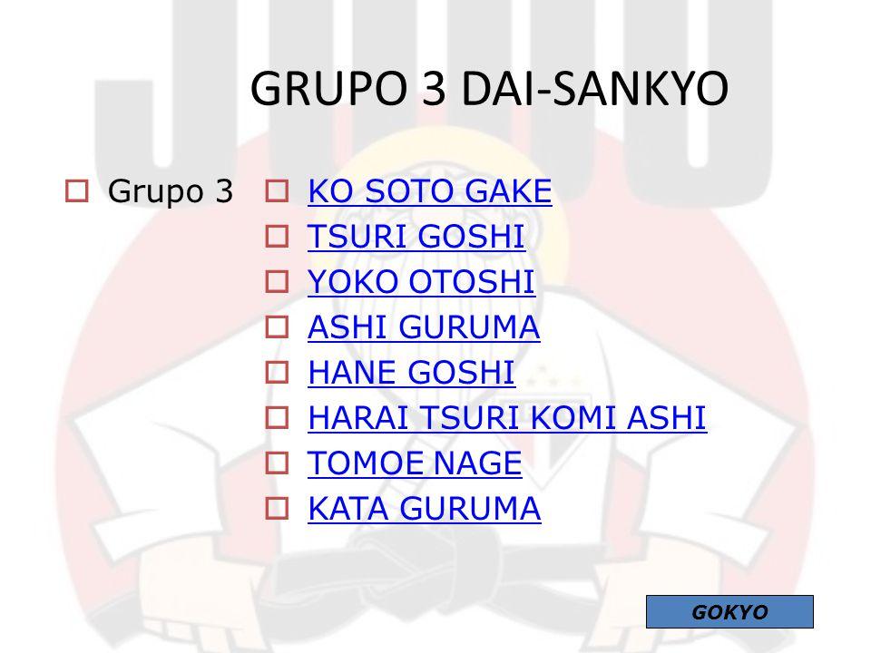 GRUPO 3 DAI-SANKYO Grupo 3 KO SOTO GAKE TSURI GOSHI YOKO OTOSHI