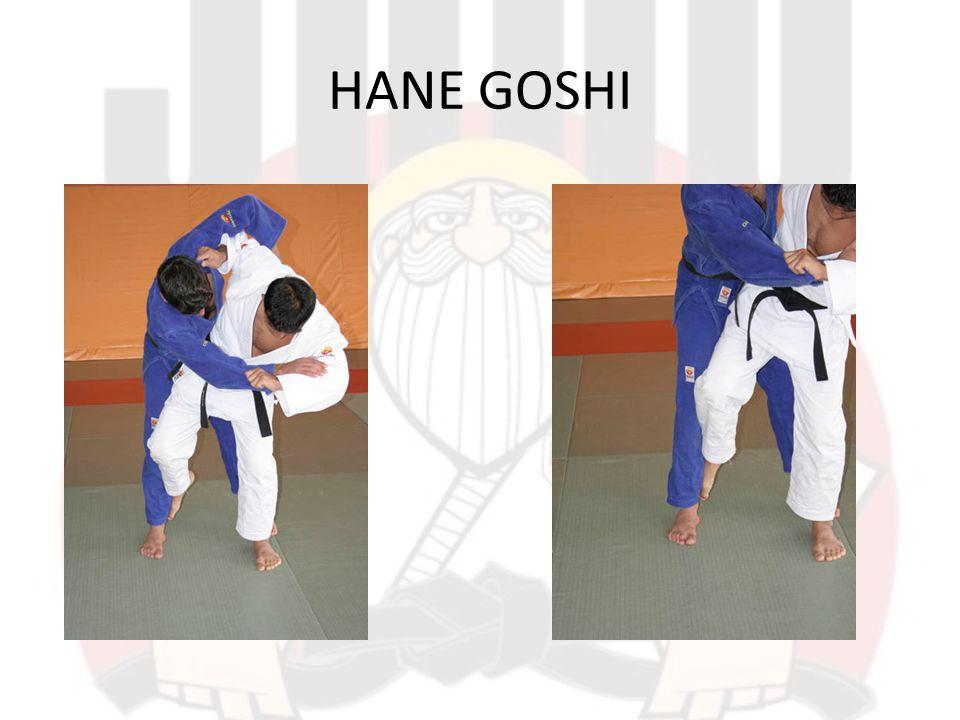 HANE GOSHI