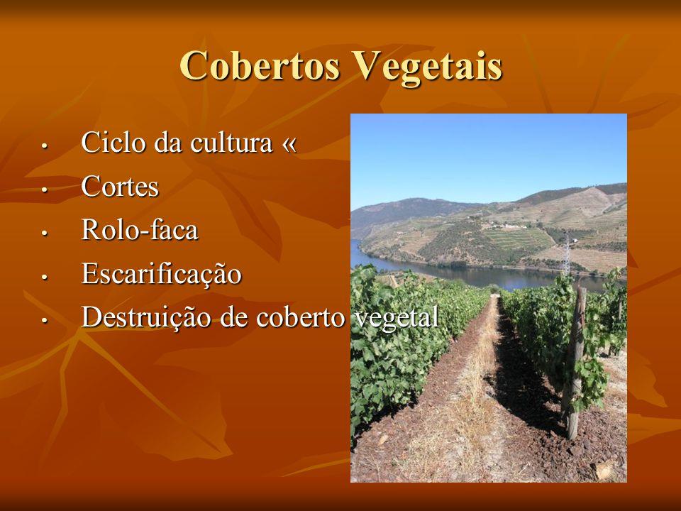 Cobertos Vegetais Ciclo da cultura « Cortes Rolo-faca Escarificação