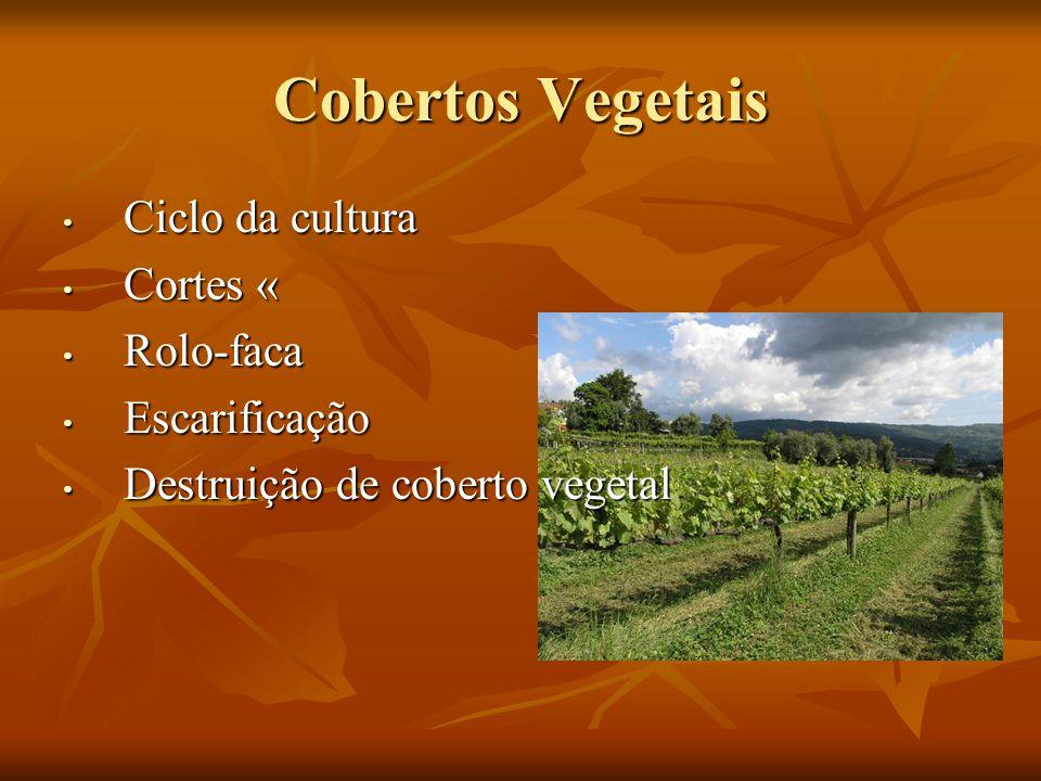 Cobertos Vegetais Ciclo da cultura Cortes « Rolo-faca Escarificação