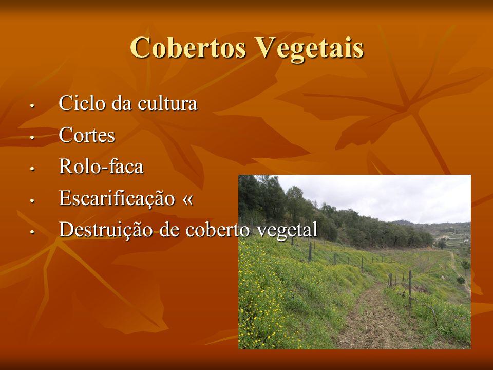 Cobertos Vegetais Ciclo da cultura Cortes Rolo-faca Escarificação «