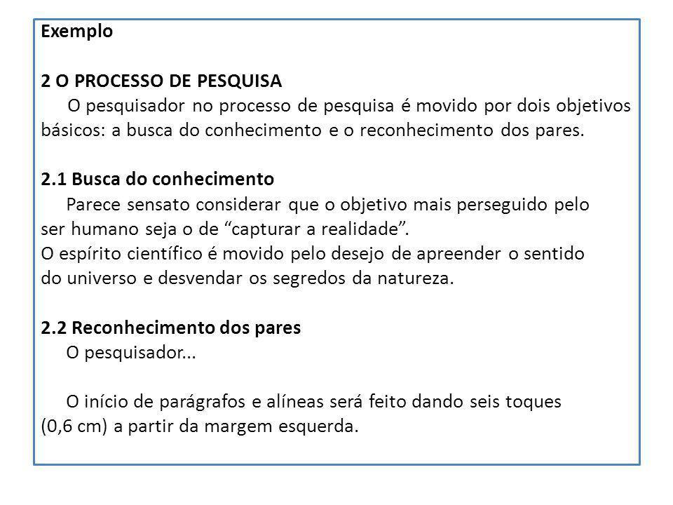 Exemplo 2 O PROCESSO DE PESQUISA. O pesquisador no processo de pesquisa é movido por dois objetivos.