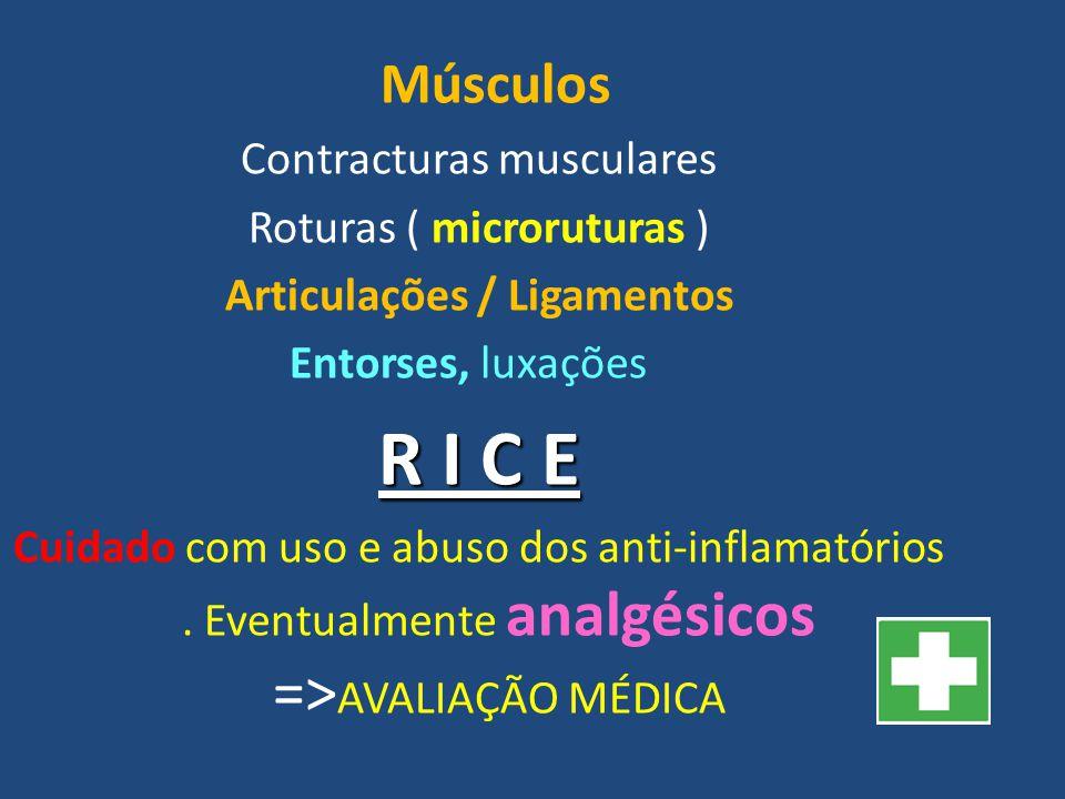 Articulações / Ligamentos