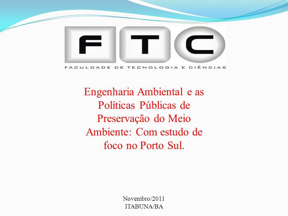 Engenharia Ambiental e as Políticas Públicas de Preservação do Meio Ambiente: Com estudo de foco no Porto Sul.