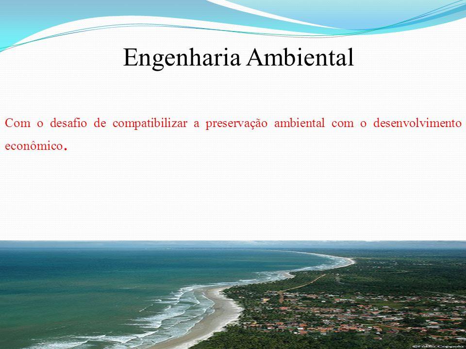 Engenharia Ambiental Com o desafio de compatibilizar a preservação ambiental com o desenvolvimento econômico.
