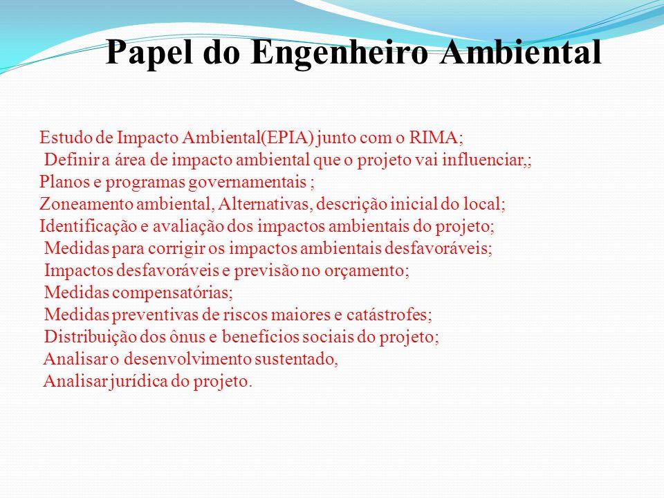 Papel do Engenheiro Ambiental