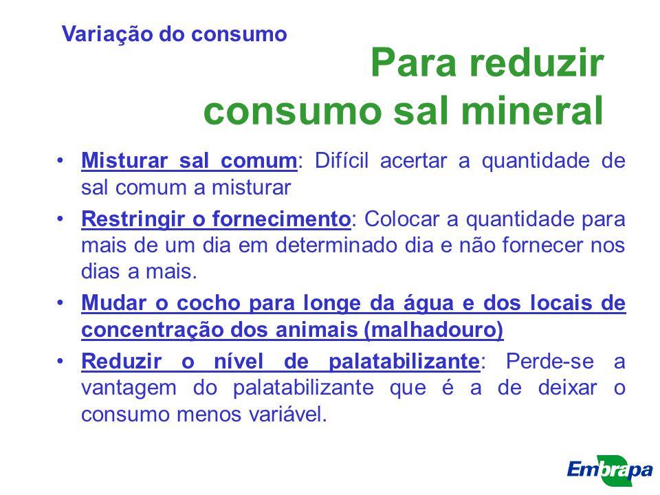 Para reduzir consumo sal mineral