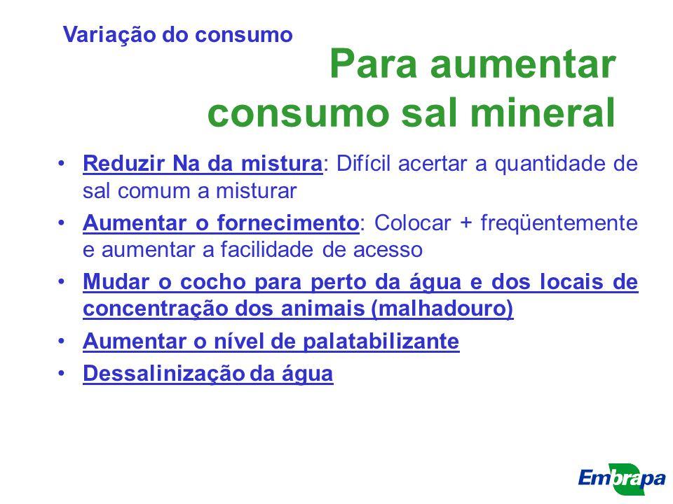 Para aumentar consumo sal mineral