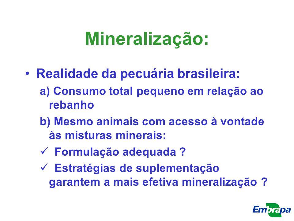 Mineralização: Realidade da pecuária brasileira: