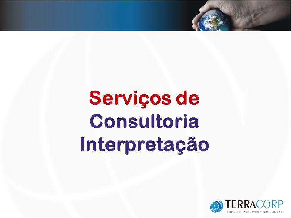 Serviços de Consultoria Interpretação