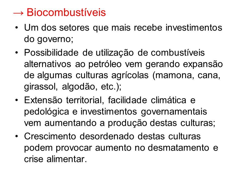 → Biocombustíveis Um dos setores que mais recebe investimentos do governo;